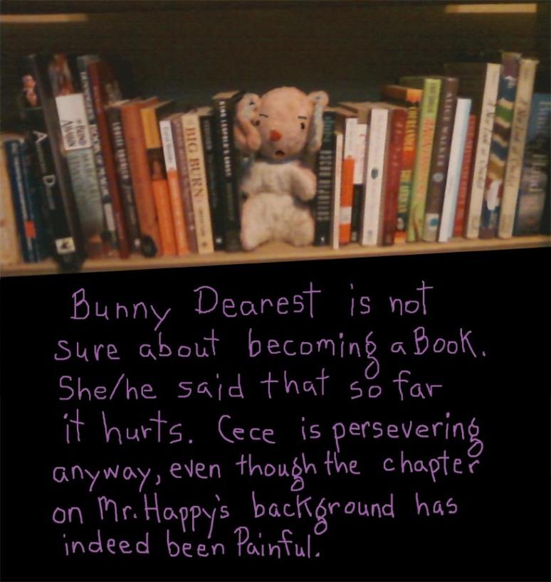 bookshelf bunny web